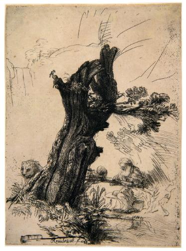 Rembrandt Harmensz. van Rijn, Hieronymus bij de knotwilg, 1648.