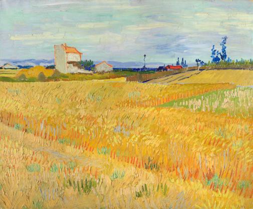 Vincent van Gogh, Korenveld, 1888.