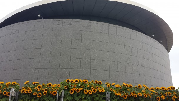 De Kurokawa-vleugel met daarvoor een aantal zonnebloemen voor het tijdelijke doolhof. Foto: Evert-Jan Pol.