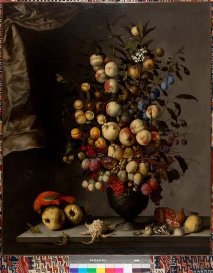 Balthasar van der Ast, Vruchtenboeket, papegaai en slakkenhuizen, privécollectie. Foto: Andreas Pauly.