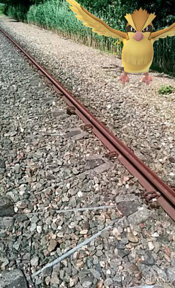 Een Pokémon bij een ongebruikte spoorlijn. Screenshot: Erwin Vogelaar.