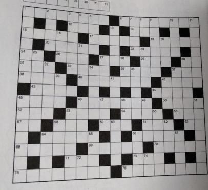 Dit is wel een kruiswoordpuzzel. Foto: Erwin Vogelaar.