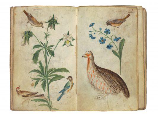 Planten: gecombineerd met de dieren en vogels, mogelijk naar echte planten. Fotograaf: Studio Tromp, Rotterdam.