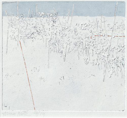 Anna Metz, Het hek, ets, driekleurendruk, 127 x 143 mm, bezit van de kunstenaar.
