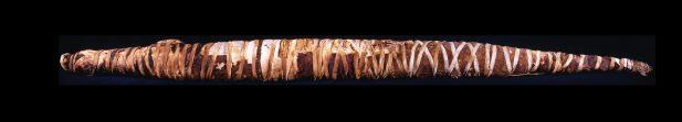 Mummie van een krokodil. Collectie en foto: Rijksmuseum van Oudheden.