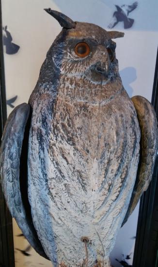 Een oude vogelverschrikker.
